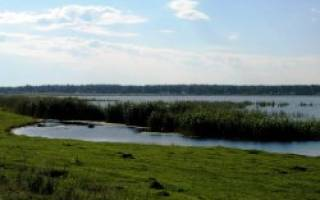 Суртаныш озеро — место для рыбака