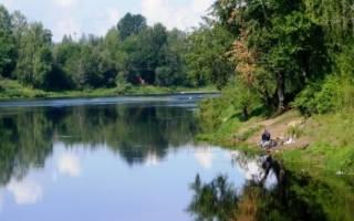 Мста — место для рыбака