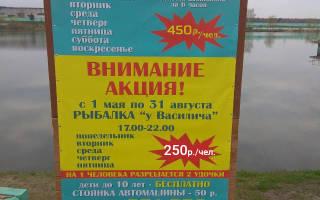 Рыбалка у Василича