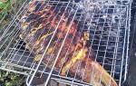 Ароматный карась-гриль — рыбные рецепты