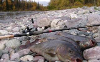 Армань — место для рыбака