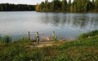 Червишевские пруды — платные водоемы