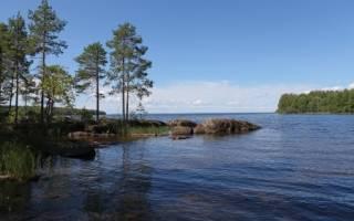 Онега — место для рыбака