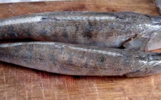 Рыбный пирог с судаком и форелью — рыбные рецепты