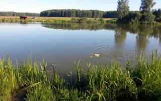Рыбалка и отдых «Мерлеево»