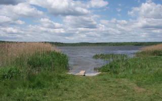 Савельево озеро — место для рыбака