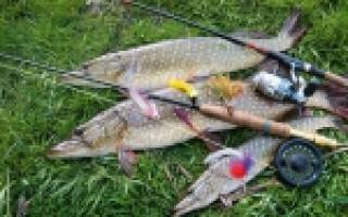 Тобол — место для рыбака