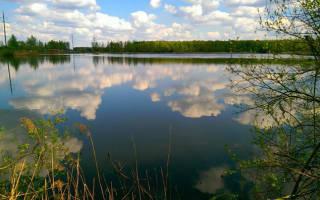 РК «Рыбалка возле Глобуса» — место для рыбалки