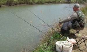 Пруд на реке Сосновка — место для рыбалки