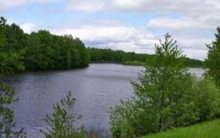 Шелубей озеро — место для рыбака