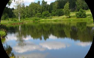 Платник в Залесовском районе — платные водоемы