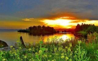 Аргазинское водохранилище — место для рыбака
