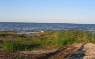 Кубенское озеро — место для рыбака