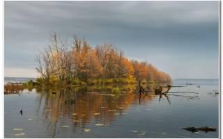 Рыбалка на Волге с Антоном Федоровым
