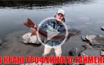 Рыбалка с Андреем Питерцевым