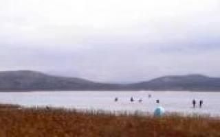 Большое Ямское озеро — место для рыбака