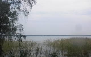 Куяныш озеро — место для рыбака