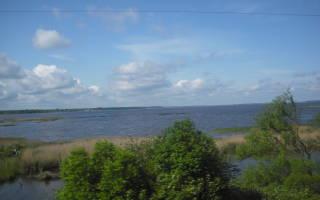 Рыбалка на Иваньковском водохранилище с Алексеем Постных