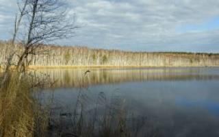 Большой Биляшкуль озеро — место для рыбака
