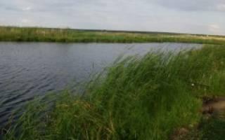 Куташи озеро — место для рыбака
