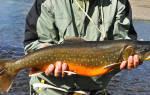 Канчалан — место для рыбака