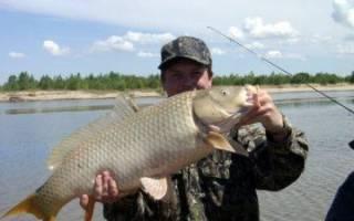 Аксай (Ростовская область) — место для рыбака