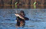 Зона отдыха «Царская рыбалка» — место для рыбалки
