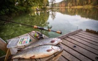 Астраханка озеро — место для рыбака