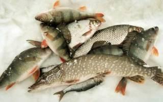 Подбор снастей и выбора эффективной тактики для рыбалки в глухозимье
