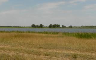 Маслянское озеро — место для рыбака