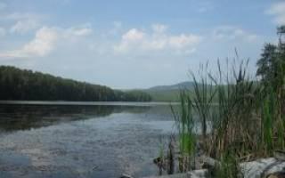 Инышко озеро — место для рыбака
