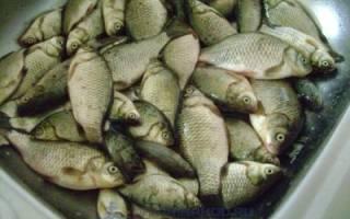 Копчёный карась — рыбные рецепты