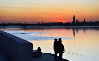 Невское озеро — место для рыбака