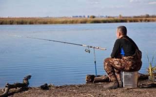Зея — место для рыбака