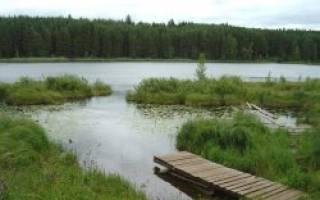 Торсуновское озеро — место для рыбака