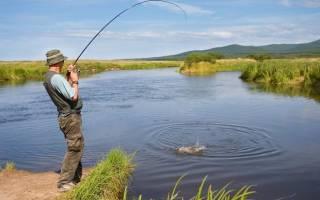 Вейга — место для рыбака