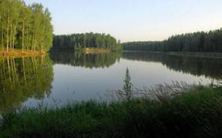 Лесное озеро — место для рыбака