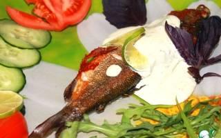 Хариус, жареный с травами в соусе из голубого сыра — рыбные рецепты
