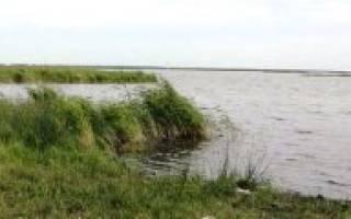 Селезян озеро — место для рыбака