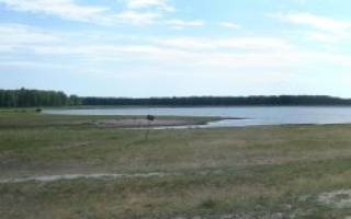 Кичигино озеро — место для рыбака