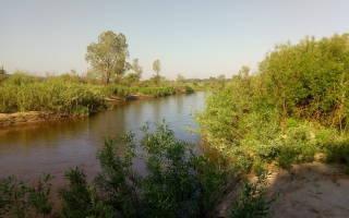 Касмала — место для рыбака