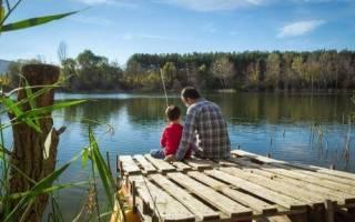 Андреевское озеро — место для рыбака