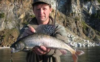 Басикал озеро — место для рыбака