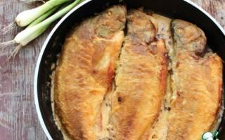 Окунь в молочном соусе — рыбные рецепты