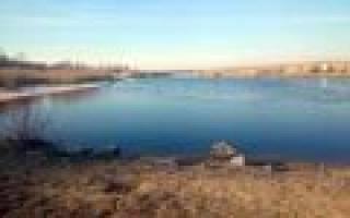 Лахтинский разлив — место для рыбака