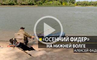 Рыбалка с Алексеем Фадеевым