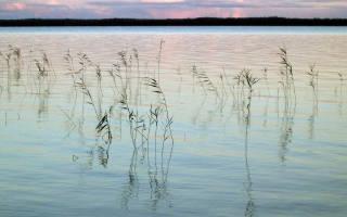 Озеро Лоймоланъярви — место для рыбака