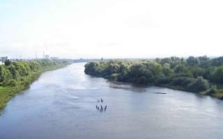 Чёрная река (Владимирская область)