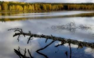 Кайгусты озеро — место для рыбака