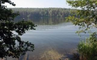 Бараус озеро — место для рыбака